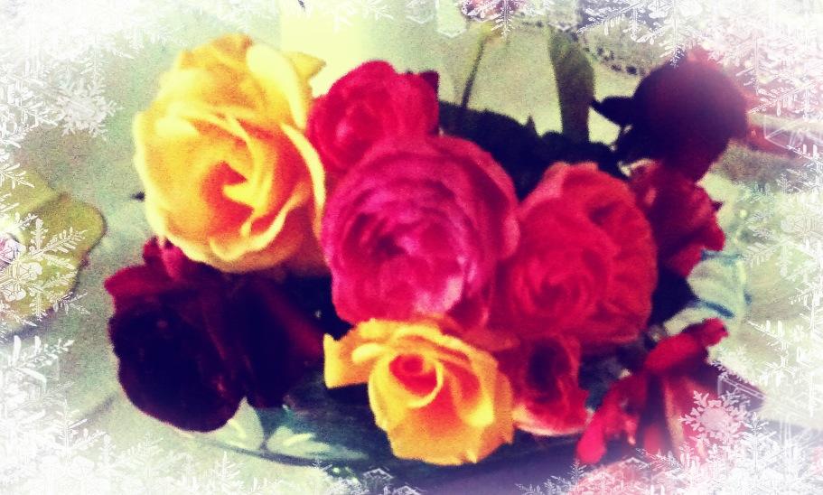 Dreisterner Rosengelee